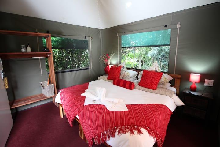 Keurbooms indigenous Tented Room