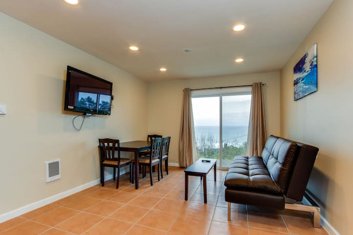 Oceanview condo: dog-friendly & close to the beach & everything in town