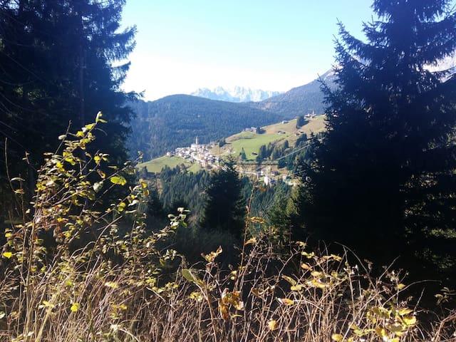 NANI: An eye on the Dolomites