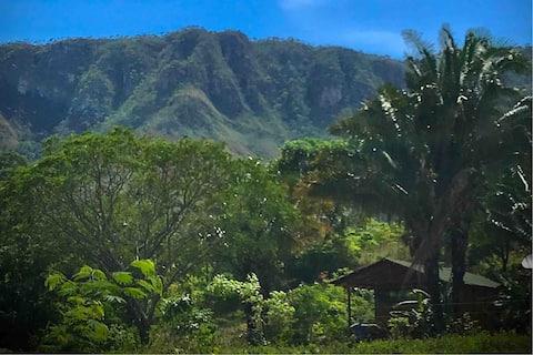 Pé de Serra Lodge - Bangalô Moinho