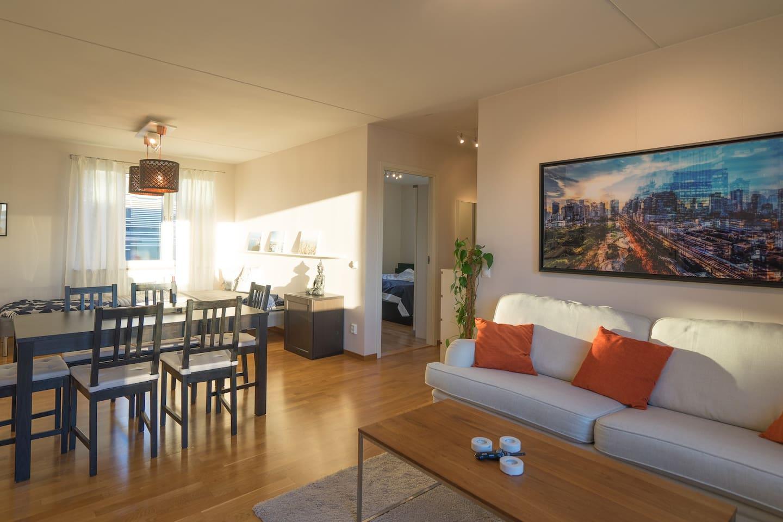 Modern ljus takvåning med centralt läge appartamenti in affitto a