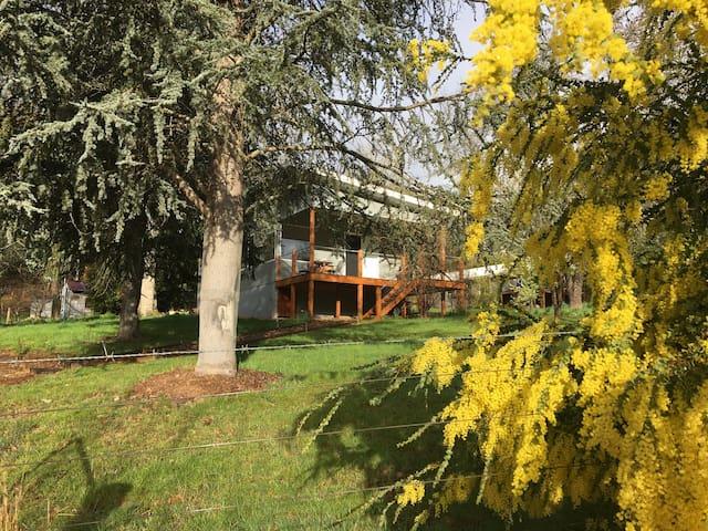 Bay Tree Cottage - a couple's retreat