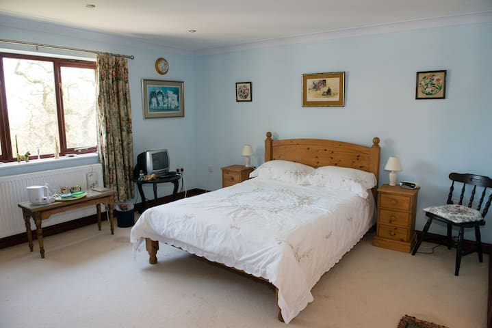 Double en-suite in country house. - Devon - Bed & Breakfast