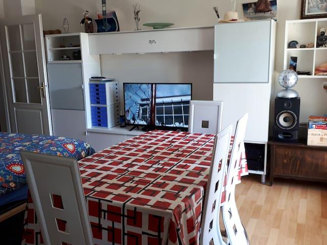 Séjour : 1 table et chaises, 1 TV (avec internet), 1 canapé convertible, 1 fauteuil, 1 table basse,...