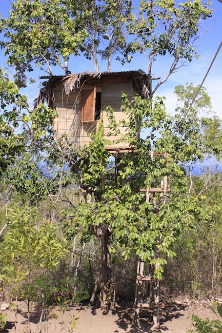 tree house, natural lovely