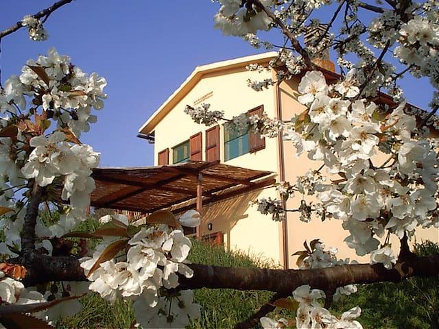 Podere Mazzana: campagna nel cuore della Toscana