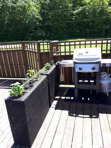 Backyard barbeque for your use