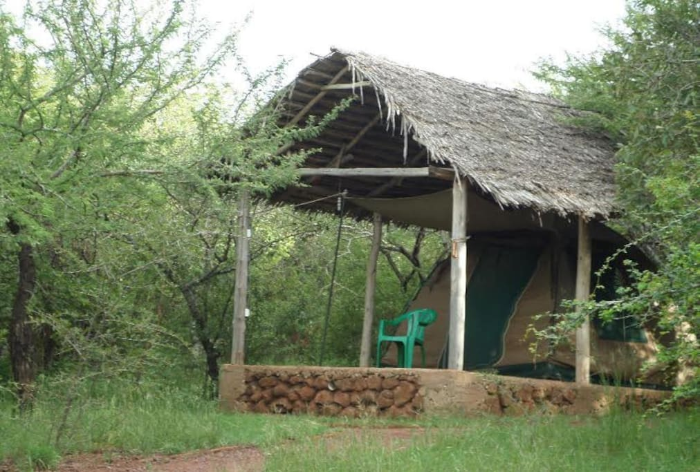Havennature Safari Camp and Lodge has enough space and tents for all causing activities for even more than 100 campers, accomodation is provided in tents of different size to suite individual family or groups requirements. The camp has unique appeal for the eco tourist, researchers and the average holiday maker.  The Geography of the region the change from savanna to the thick forest land, then to savanna again present a natural phenomenon that has remained unadulterated for millions of years.