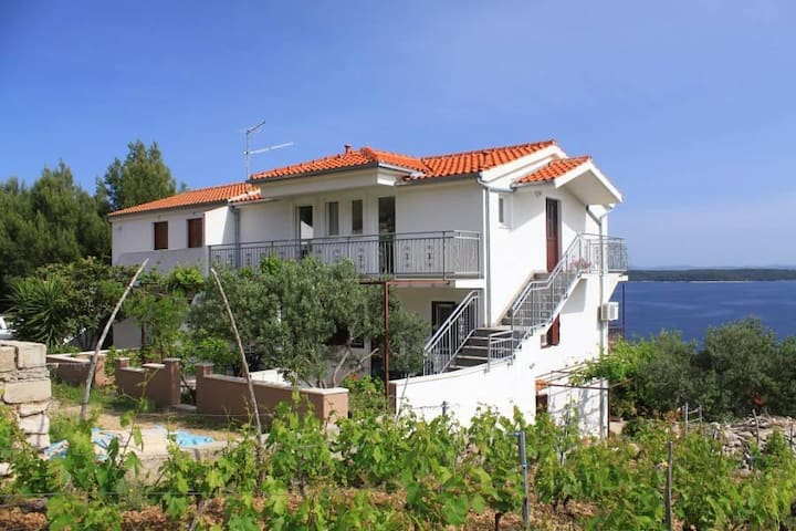 Two bedroom apartment with terrace and sea view Zavala, Hvar (A-8773-b) - Zavala