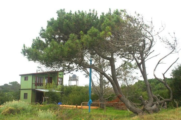 Posada Anacahuita, Rocha, Uruguay 3