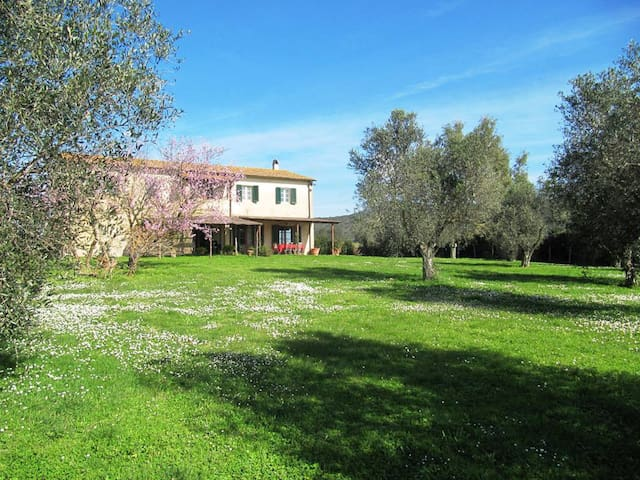 Maremma Tuscany Country House - Grosseto - House