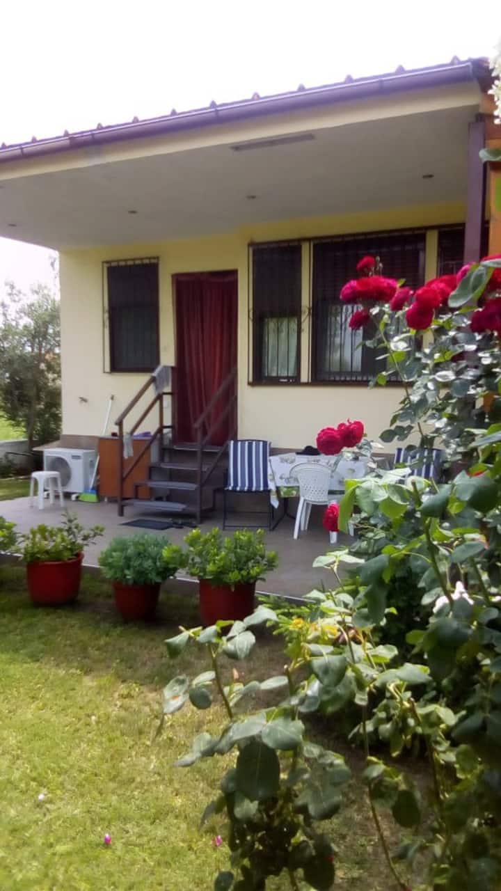 Anatoli's House