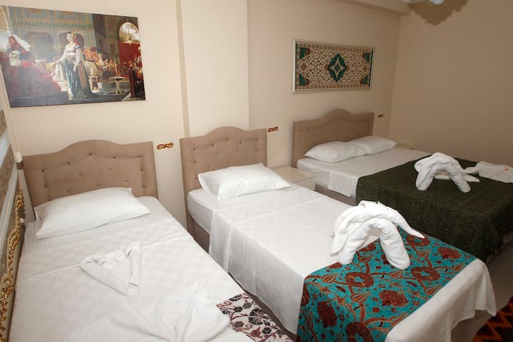 standart room at Ephesus Palace - Selçuk - Appartement