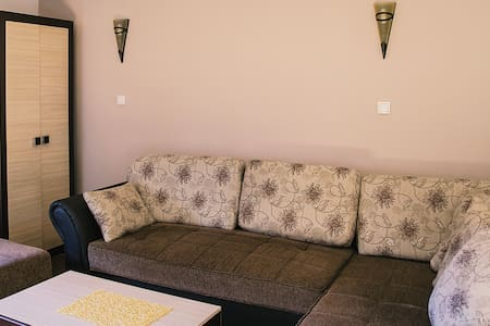 Place whit comfort, nature and air to feel rest - Zlatibor - Apartmen