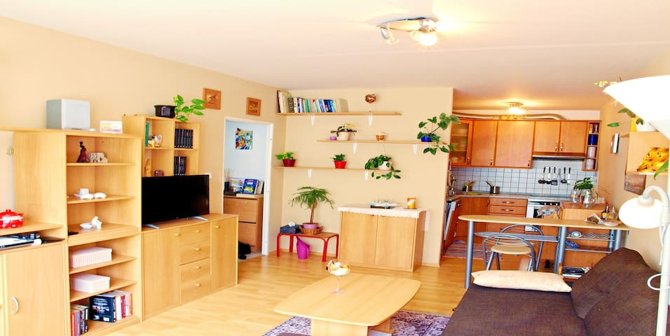 Czech typical apartment near the center