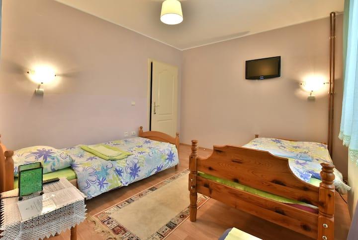 Vila Sofija Zlatibor - Double room 4