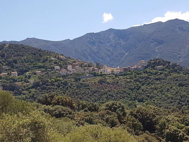 Belgodère, le vieux village perché.