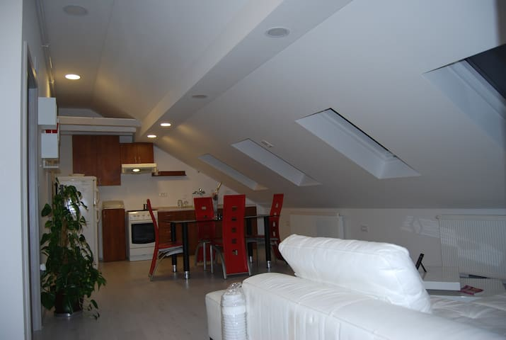 Beautifull,cozy apartament just for you!!! - Zagreb - Lägenhet
