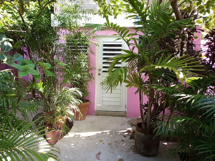 Pinkshack Cosy Room in a Caribbean Oasis