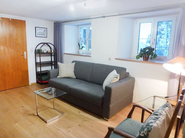 Apartment Ferienwohnung Rosa for 4 persons in Hüfingen - Hüfingen - Apartamento