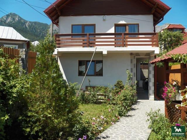 Casa de vacanta - Bușteni - House