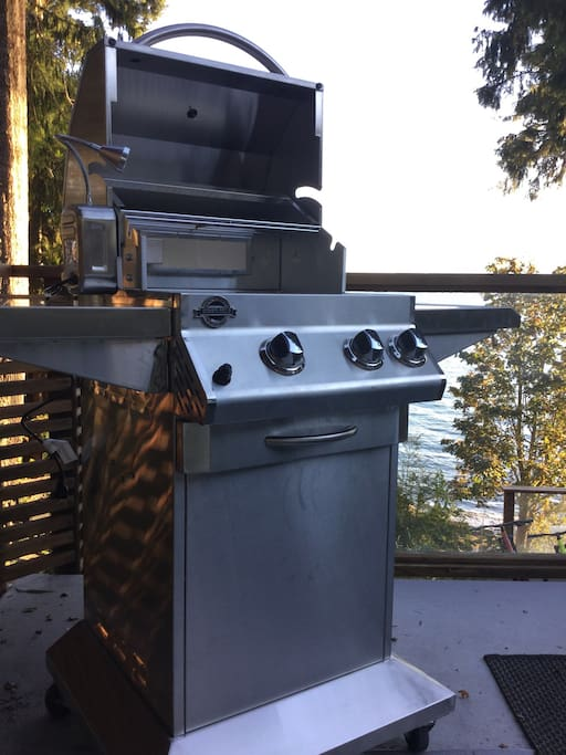 """BBQ: Our choice of grill is a brand new """"Jackson Grill"""", it is an excellent quality, has a nice even heat and gets to temp quickly. This is a proper BBQ."""