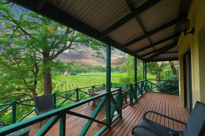 Kraft House along side with old vine vineyard