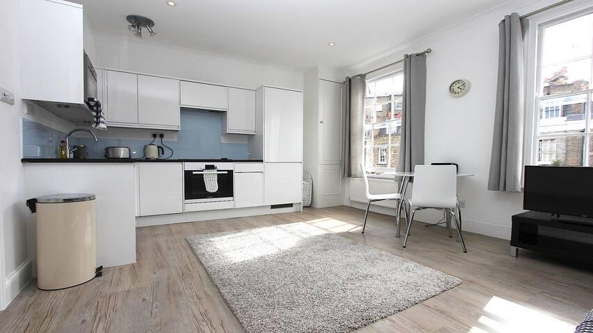 Zone 1 Victoria/Pimlico Apartment