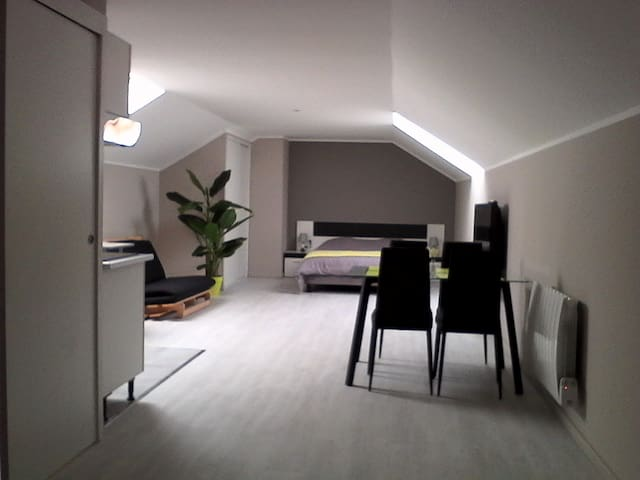 Bel appartement contemporain neuf très lumineux - Parmilieu - Huis