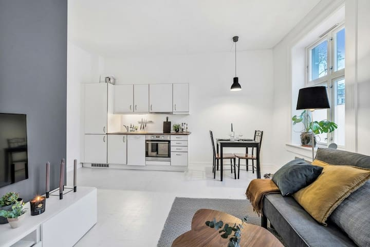 Central, modern one-bedroom apartment -Grünerløkka