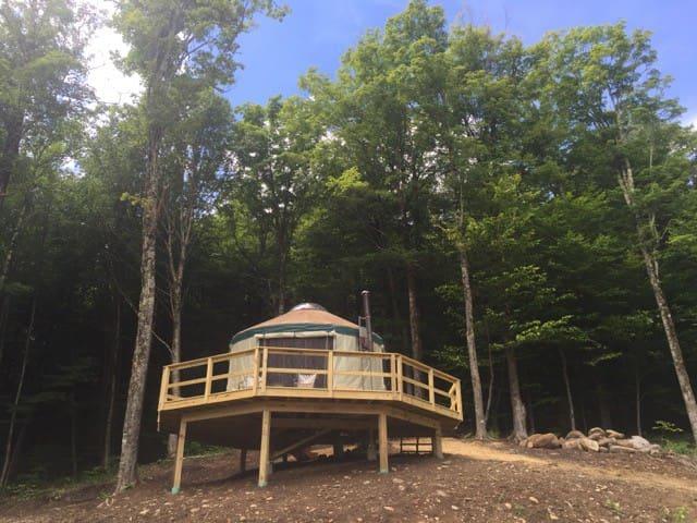 The Yurt at Beech Hill - Stowe - Yurt