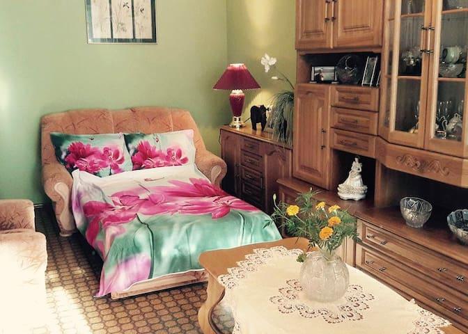 True hospitality: stay with a local - Klaipėda - Condo