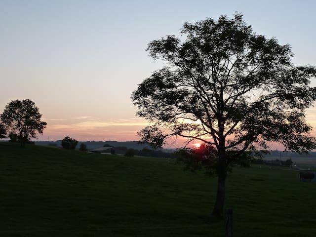 lumineux et calme - Tarcenay - Villa