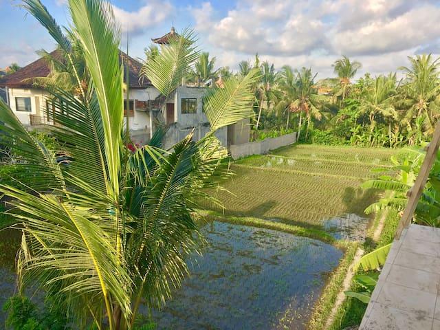 Pondok Ekasari 2 - Sunrise room