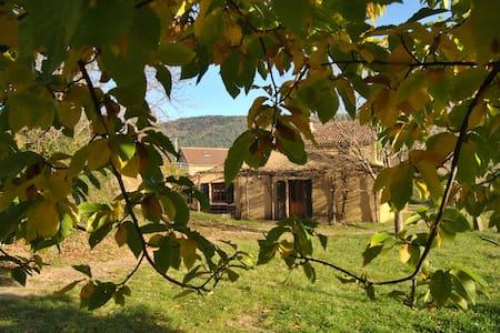 le trucal de la Blachère - Ponteils-et-Brésis
