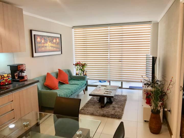 Modern apartment in downtown Santiago