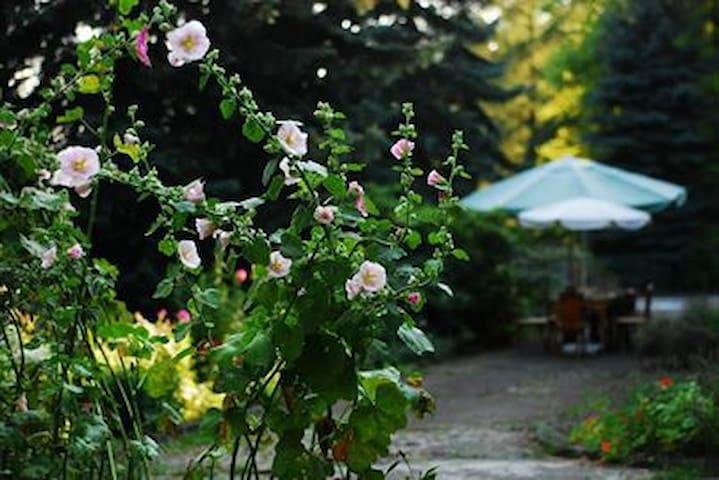 """Willa """"Leśny Ogród"""", pokój dla 3 osób"""