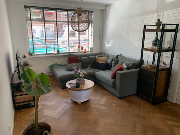 Cosy house with roof terrace in Haarlem