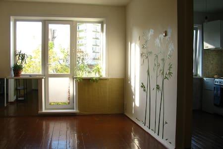 Уютная комната в центре города - Perm' - Pis
