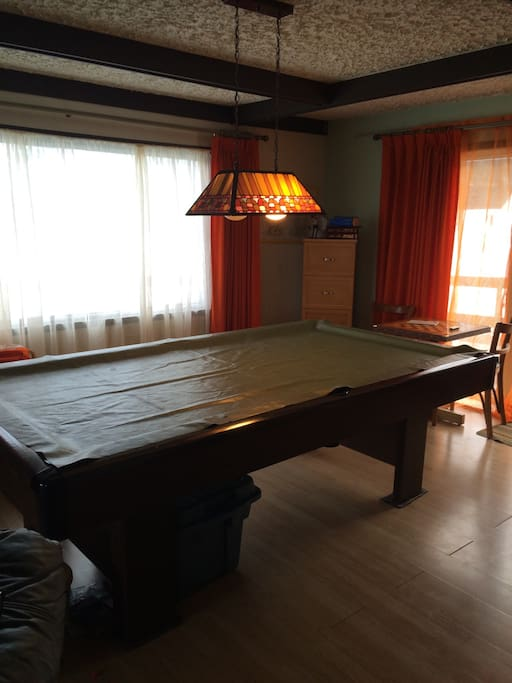 Pool table next  to spacious patio area with peaceful environment