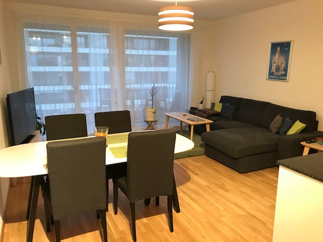 Brand new flat close to CERN, Airport and Palexpo