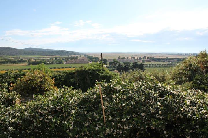 Panorama da casa nostra