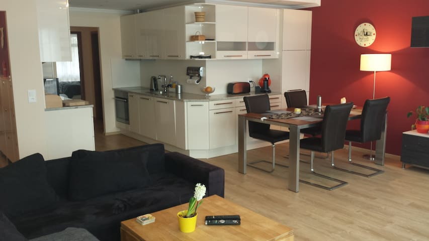 modern & central apartment - Bazel - Appartement