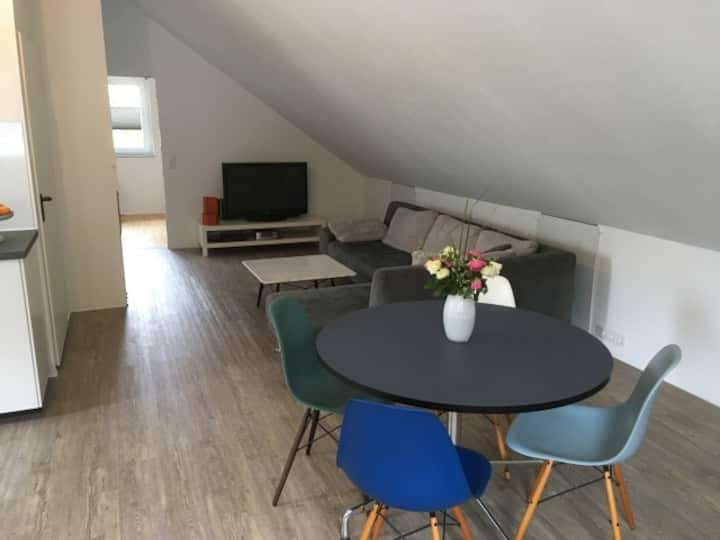 Apartment VOGT  / Basel-Freiburg-Mulhouse