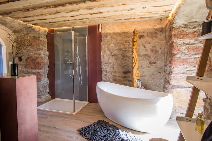 Mühlbastei Wellness-Suite mit finnischer Sauna - Bautzen - Inny