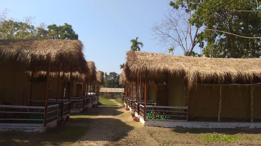 Encamp Adventures - Kaziranga Luxury Camp