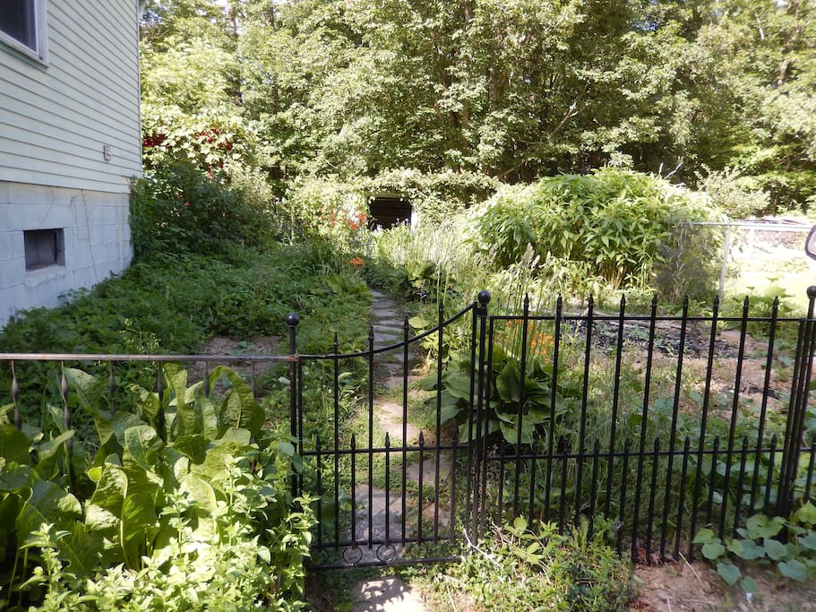 Garden and walkway on side yard