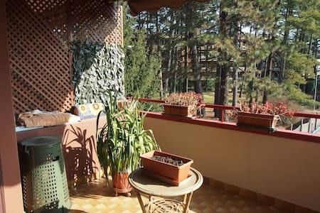 Cosy apartment in a quiet area - Tradate - Appartamento