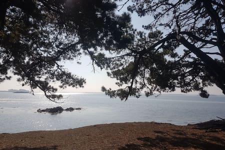 Studio île aux moines proximité plages