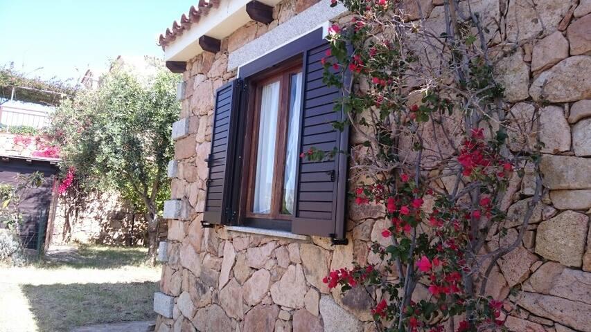 Belle maison typique à 2 kms de la mer - Limpiddu - House
